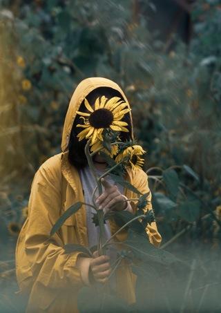 Femme cachant son visage derrière un tournesol